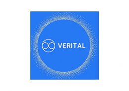 Client Experience - Verital